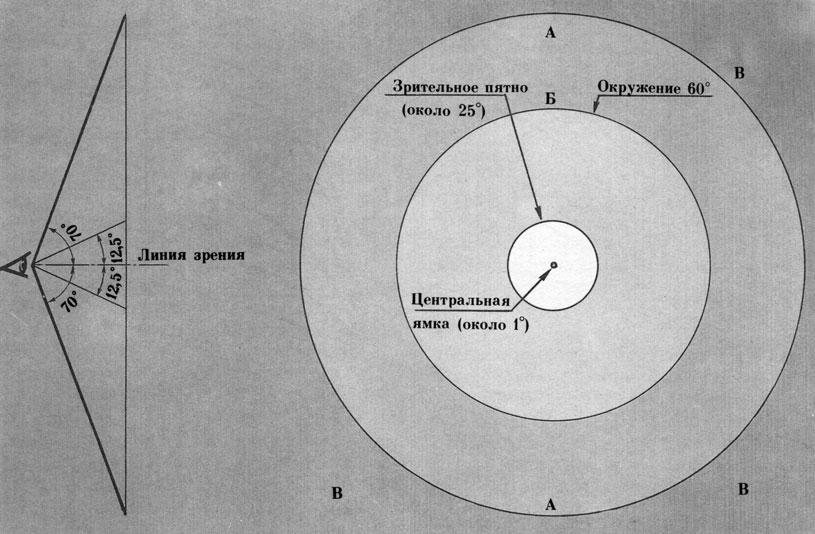 Схема деления поля зрения на